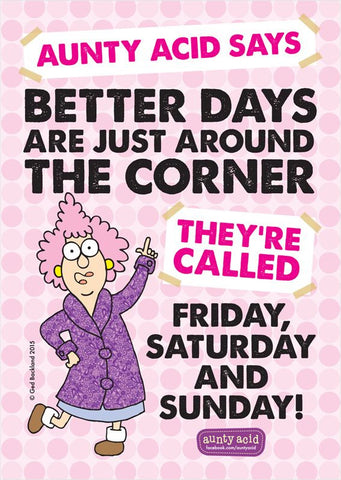 Aunty Acid Better Days Poster