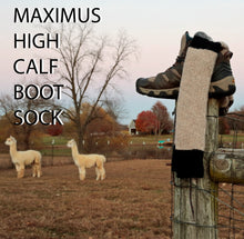 Load image into Gallery viewer, Maximus Sock  High Calf Boot