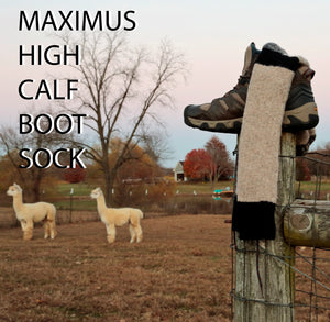 Maximus Sock  High Calf Boot