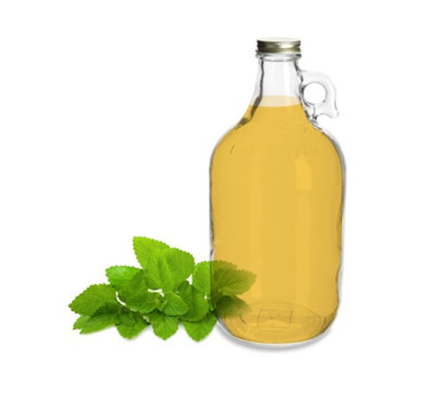 Lemon Balm Oil – Bulk (100% Organic) - Earth Elements Organics