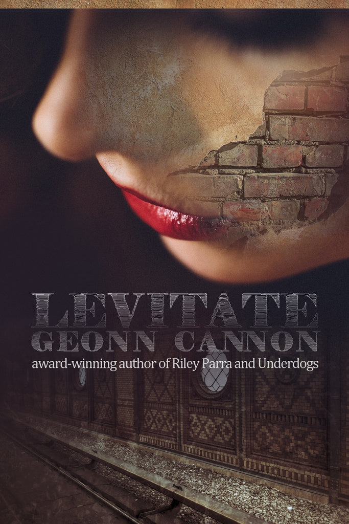 Levitate: A Spy Novel