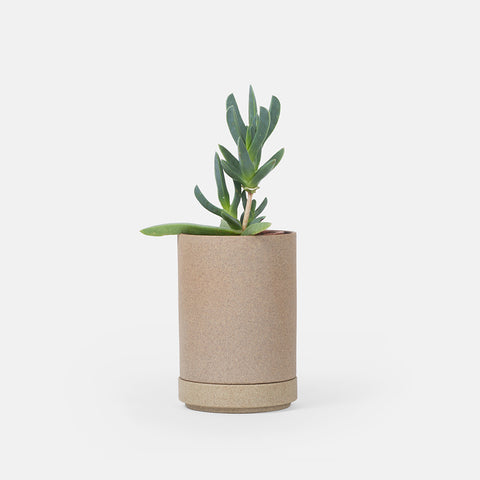 Mini Beige Planter
