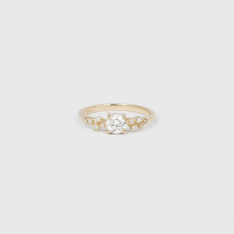 Diamond Ring with Side Clusters