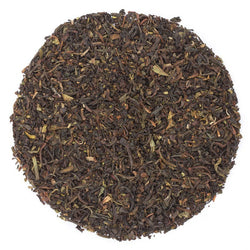Tippy Golden Darjeeling Earl Grey - The UK Loose Leaf Tea Company