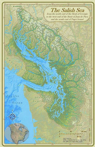 Salish Sea tribes art