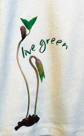 Organic Cotton Women's T-shirt - Live Green Seed