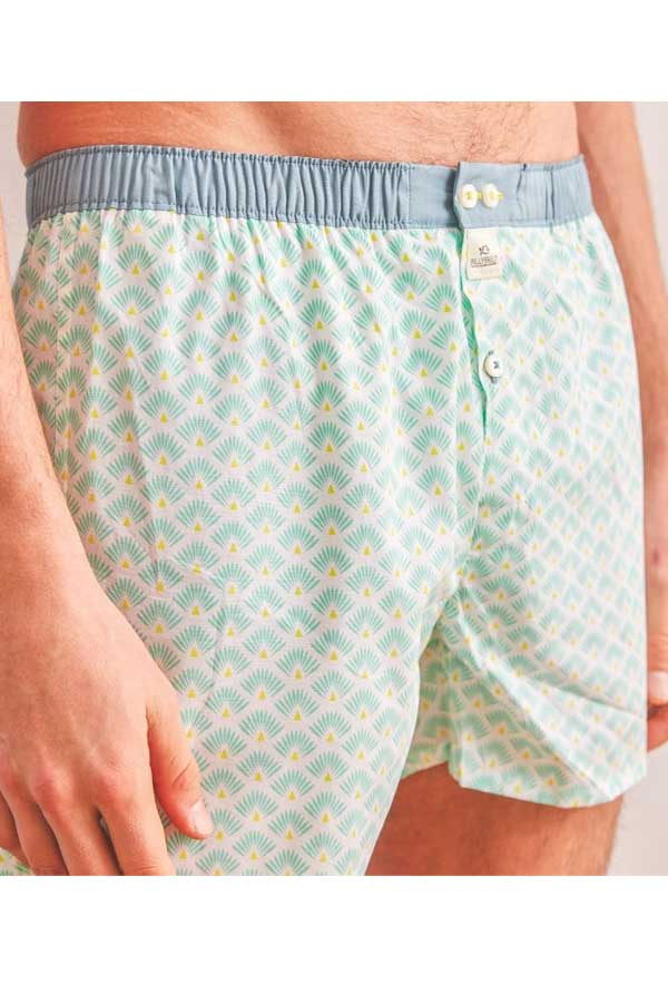 Men's Organic Cotton Boxers - Green Leon