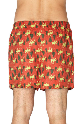INTIMO Men's Holiday Moose Tree's Boxers