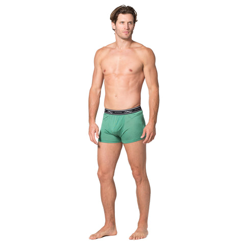 Intimo Classic Exposed Waistband Silk Knit Boxer Brief - Intimo