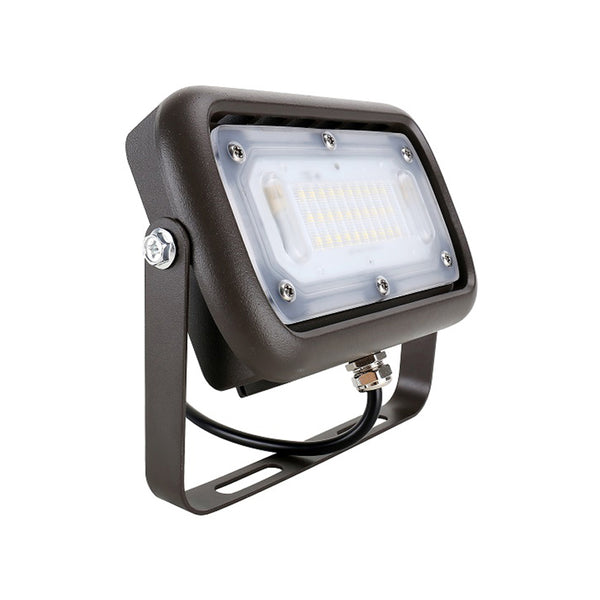 LED Flood Light 120V