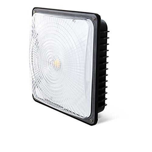 LED Canopy Light 120V
