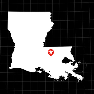 Digital Vector Map of Louisiana