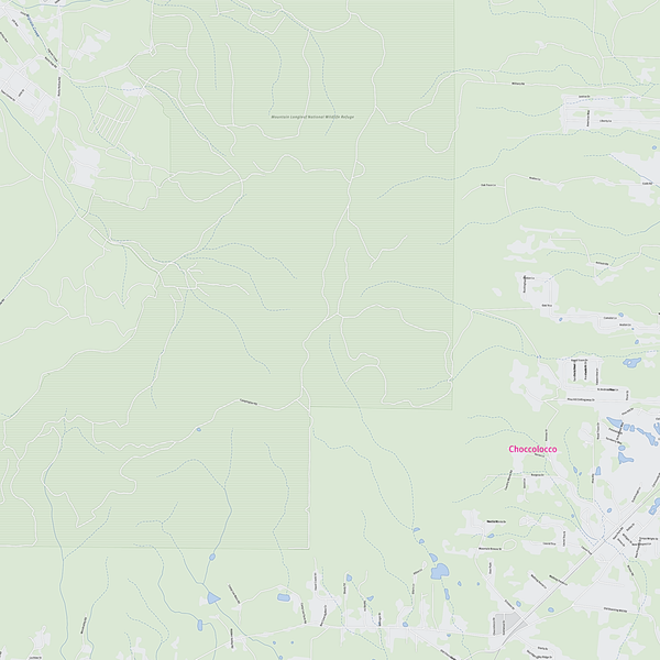 Royalty-free, digital vector street map of Calhoun County, Alabama. Partial close-up of the map.