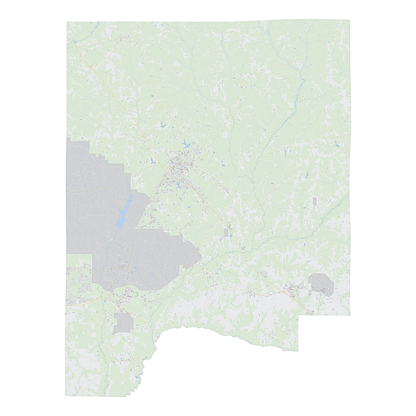 Royalty-free, digital vector street map of Dale County, Alabama.