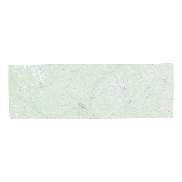 Royalty-free, digital vector street map of Geneva County, Alabama.