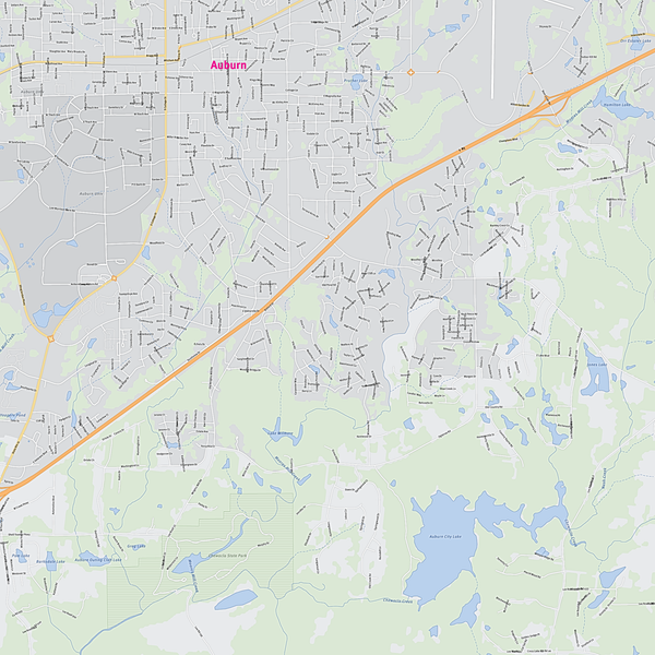 Royalty-free, digital vector street map of Lee County, Alabama. Partial close-up of the map.