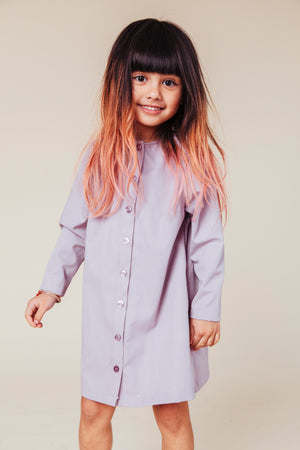 Mauve Coat Dress