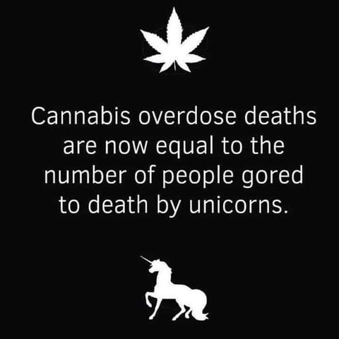 weed deaths zero unicorn deaths zero fire weed meme green glass