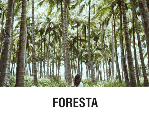 Foresta Original Goods