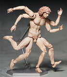 Figma SP-075 Vitruvian Man from The Table Museum [SOLD OUT]