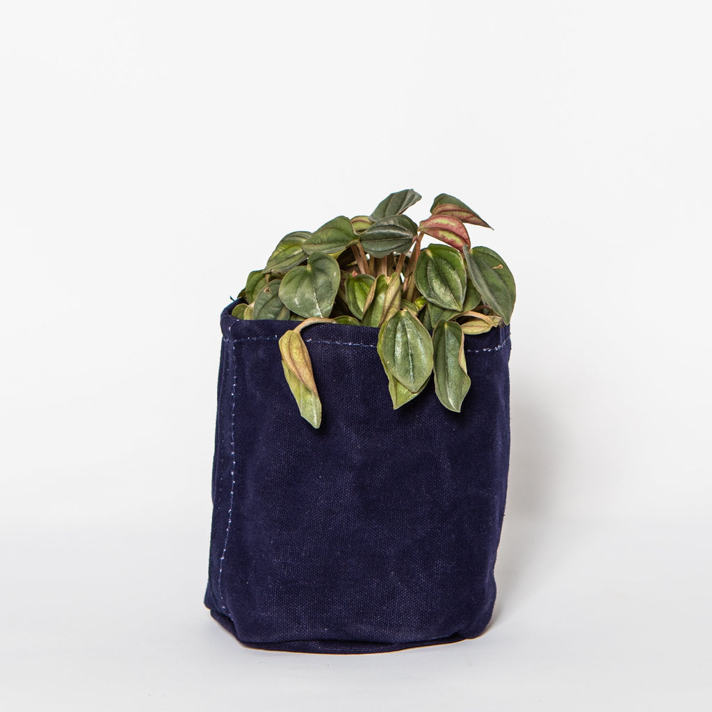 Small Waxed Canvas Pot Cover, Ink Blue