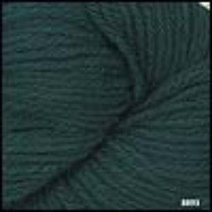 220 Superwash Hunter Green 8893