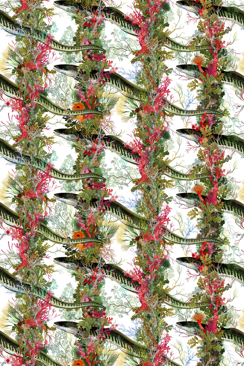 eel colonnade wallpaper, timorous beasties, wallpaper, - adorn.house