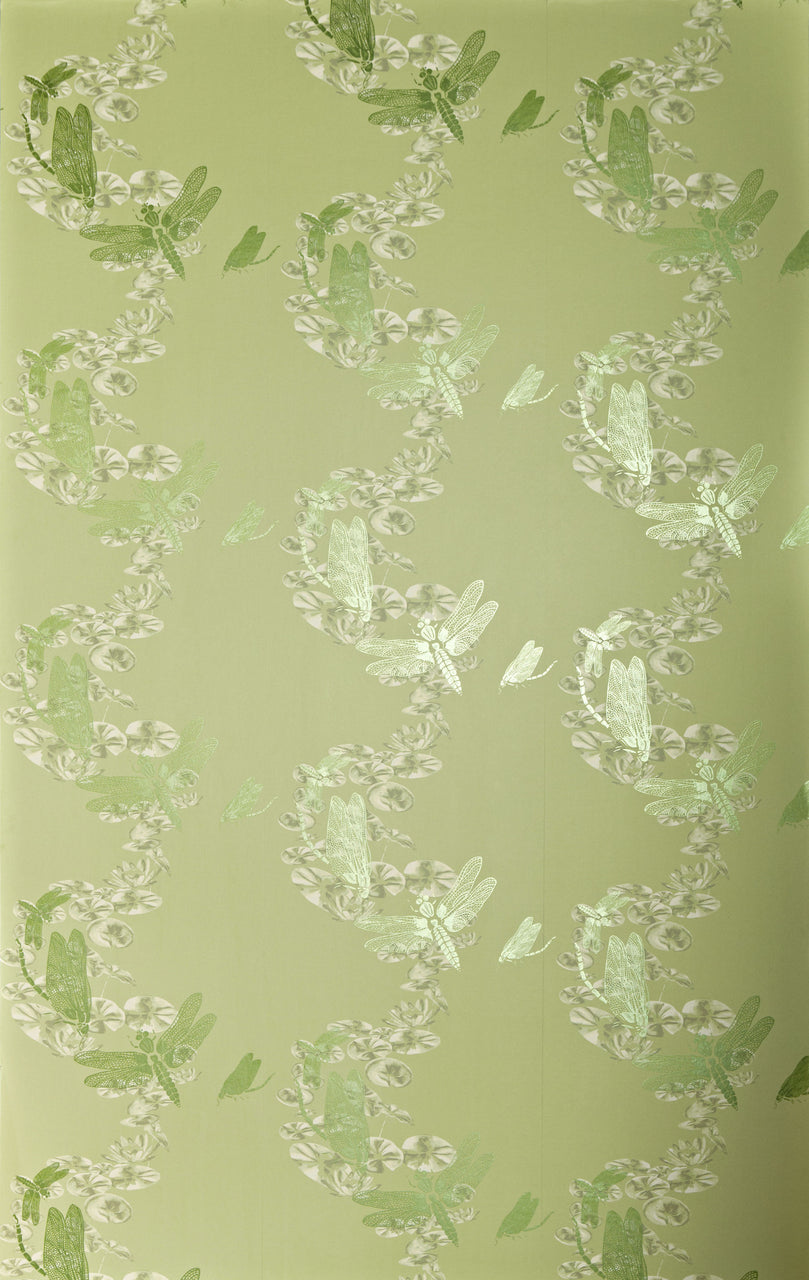 dragonfly, Barneby Gates, wallpaper, - adorn.house