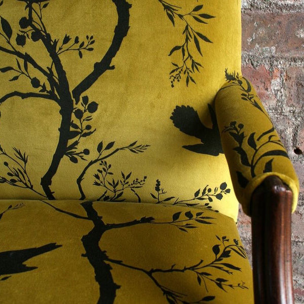 birdbranch stripe velvet fabric, timorous beasties, fabric, - adorn.house