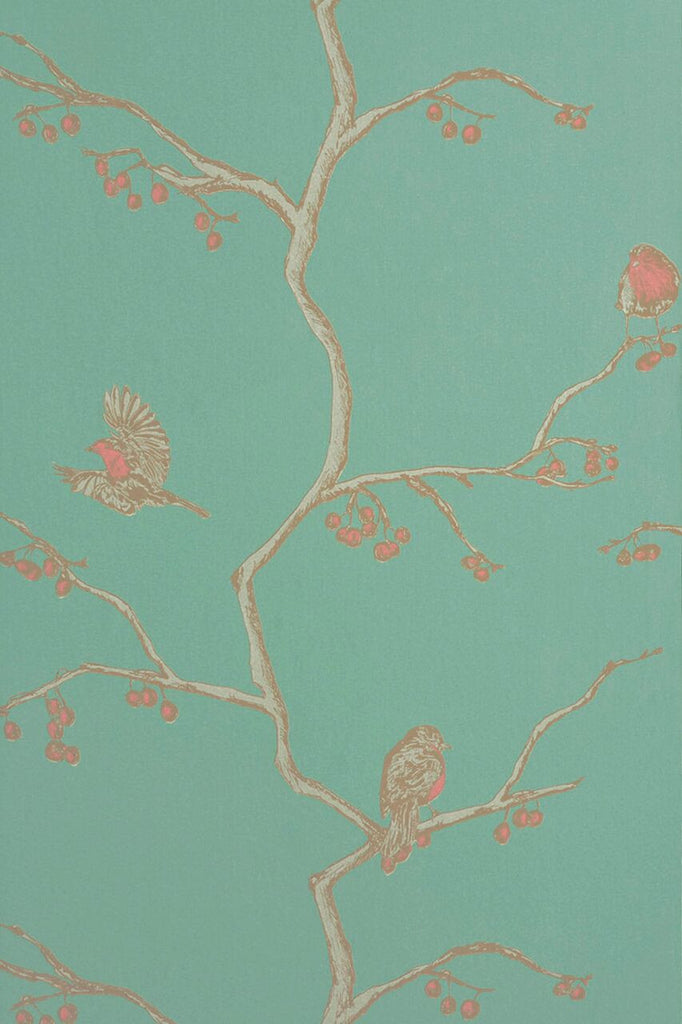 english robin | wallpaper - adorn.house