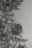 superwide thistle | wallpaper, timorous beasties, wallpaper, - adorn.house