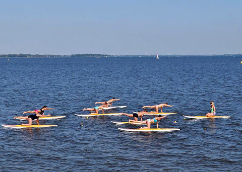 FORMATION - SUP FITNESS