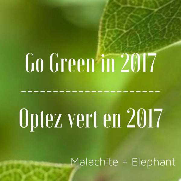 Go Green in 2017: Step 3 - How to Start?  & Taking Stock