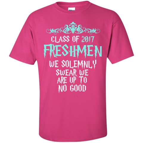Class of 2017 Freshmen We Solemnly Swear We Are Up to No Good Cotton T-Shirt