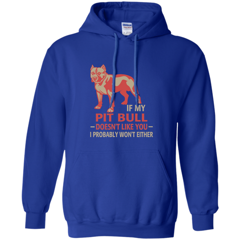 If my pit bull doesn't like you I probably wont either Hoodie