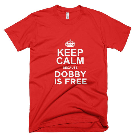 Tshirt - Keep Calm Because Dobby Is Free