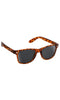 Glassy Sunnies Leonard Tortoise - Fuel Clothing  - 1