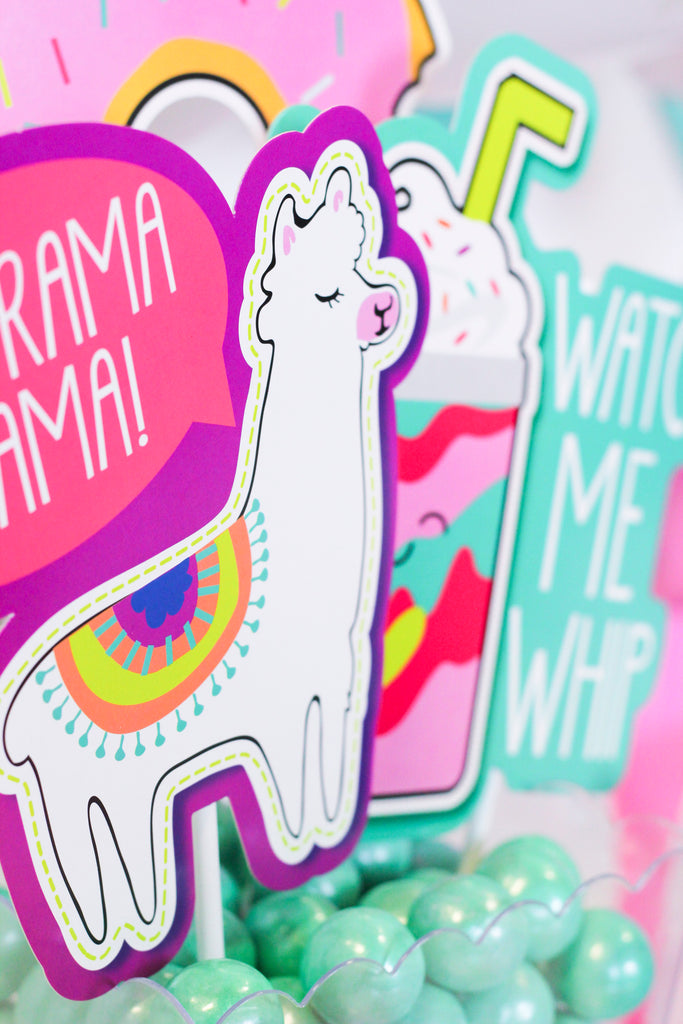 Llama Party Ideas -- Zurchers