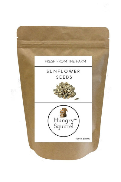 Sunflower Seeds : 250 gms - HungrySquirrel