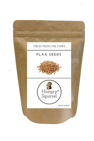 Flax Seeds : 250 gms - HungrySquirrel