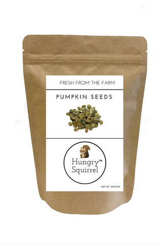 Pumpkin Seeds : 250 gms - HungrySquirrel