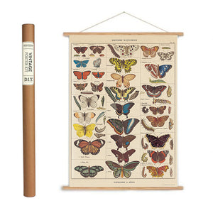 Butterfly Samples Wrapping Paper / Poster