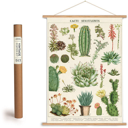 Cacti And Succulents Wrapping Paper Poster Present
