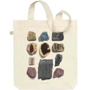 Eleven Fossils Tote Bag