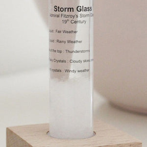 Admiral Fitzroy's Storm Glass