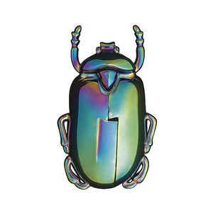 Iridescent Beetle Corkscrew