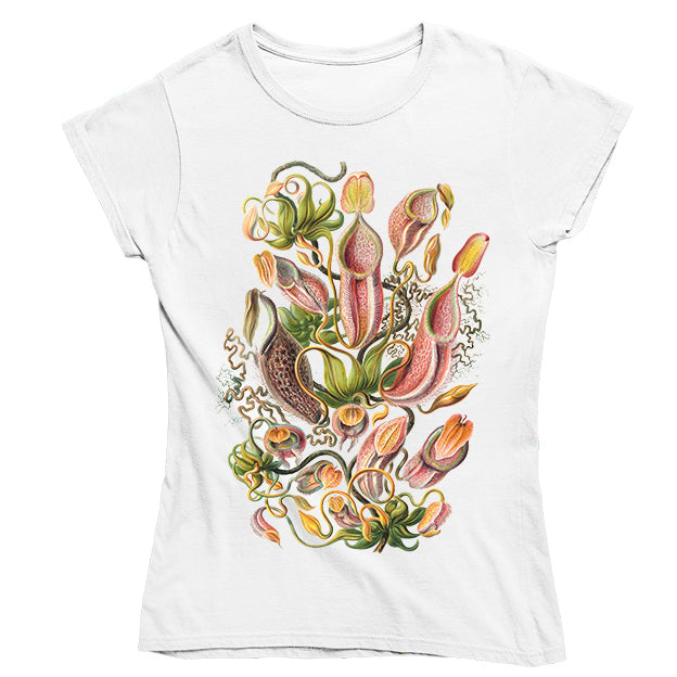 Nepenthaceae by Haeckel Women's T-shirt - Fitted