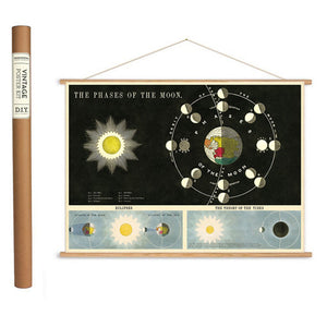 Phases of the Moon Wrapping Paper / Poster