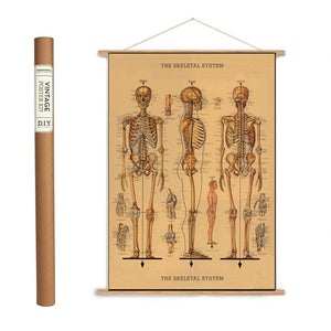 Skeleton Wrapping Paper / Poster