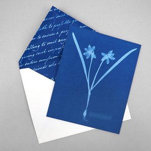 Sunprint Notecards